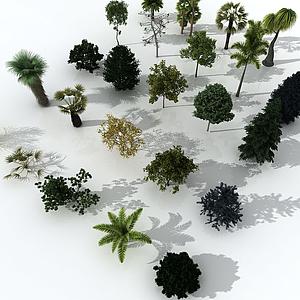 3d树木合集模型