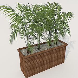 花箱植物模型