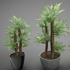 3d綠色植物<font class='myIsRed'>盆栽</font>模型