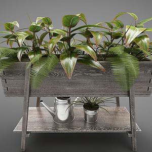 現代植物裝飾槽模型