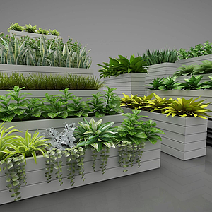 3d植物<font class='myIsRed'>盆栽</font>擺件模型