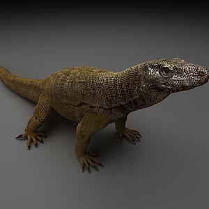 3d蜥蜴模型