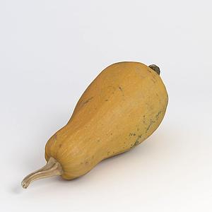 蔬菜角瓜模型
