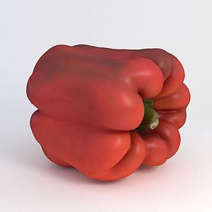 蔬菜辣椒模型