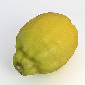 水果檸檬模型
