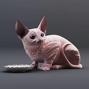 斯芬克斯貓模型