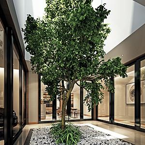 陽臺花園綠植樹模型