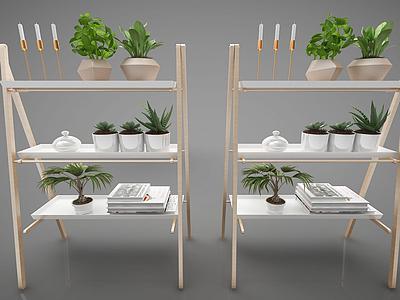 3d裝飾植物模型