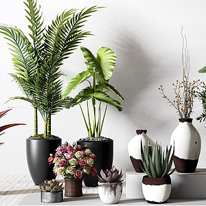 綠植花卉盆栽組合模型