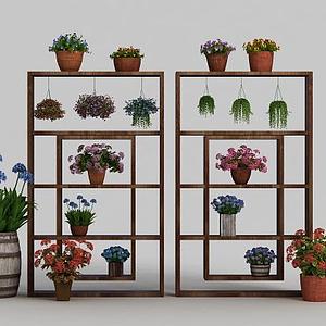 植物裝扮模型