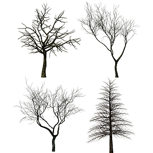 现代树木枯树模型