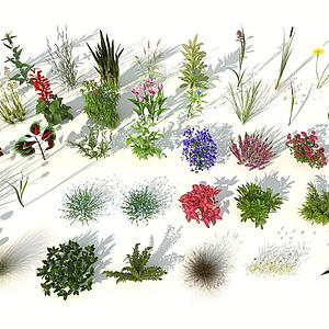 现代室外花草组合模型