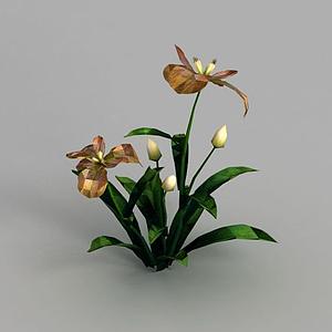 3d魔獸世界游戲灌木花叢裝飾模型