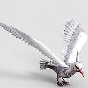 洪荒游戲白海鷗模型
