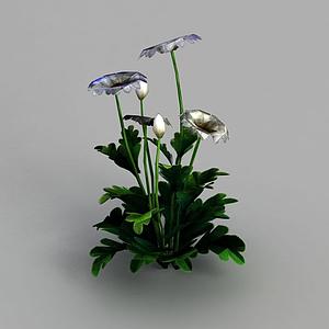 3d魔獸世界灌木花叢裝飾模型