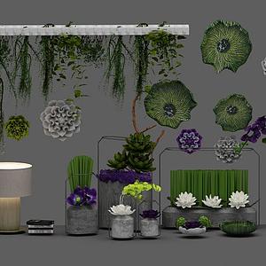 3d植物組合模型