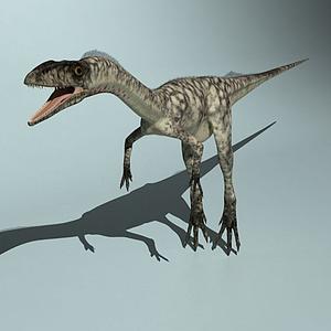 腔骨龍模型