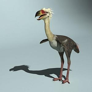 恐鶴恐龍模型
