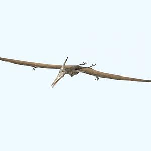 公元前恐龍時代-鳥龍模型