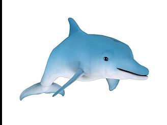 卡通海豚帶骨骼動畫模型