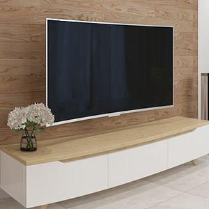 曲面電視機模型