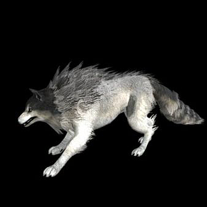 帶綁定的狼模型