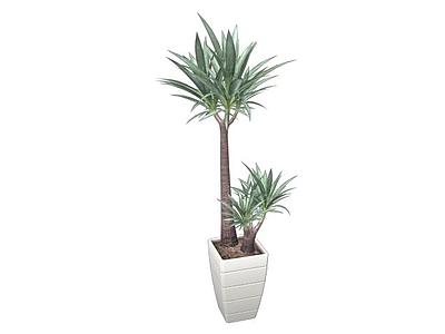 3d盆栽模型