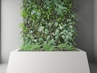 3d植物墻模型