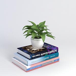 書籍和植物模型