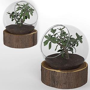 現代桌面擺件玻璃盆栽模型