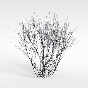 冬天的灌木模型