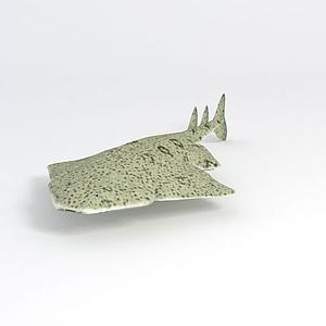 海洋魚模型