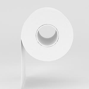 衛生卷紙模型