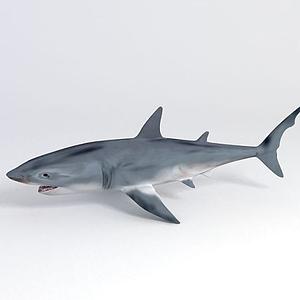 海底世界鯊魚模型