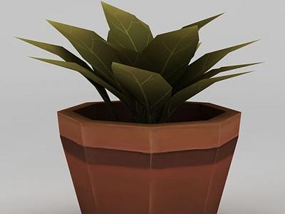 3d植物盆栽模型