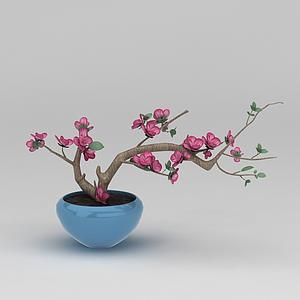 3d仿真花卉盆景模型