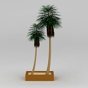 3d仿真椰子樹裝飾模型