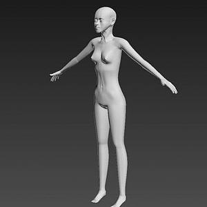 3d仿真女性人體模型