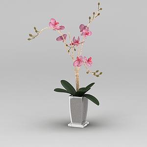 3d仿真蘭花花瓶模型