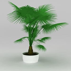 大廳盆景棕櫚樹模型