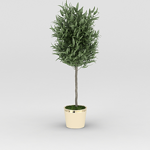 3d仿真花盆綠樹模型