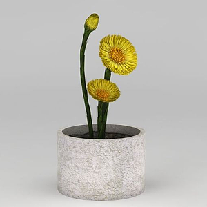 3d黃色小花盆栽模型