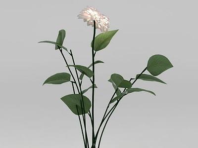 3d植物<font class='myIsRed'>花</font>草綠植免費模型