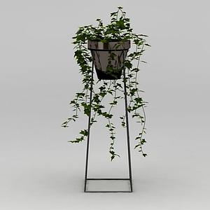 藤蔓綠植模型
