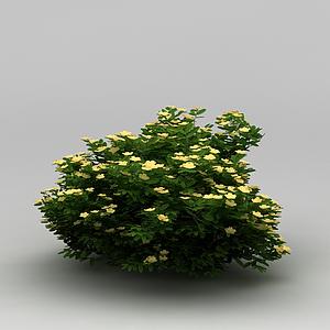 景觀植物綠籬模型
