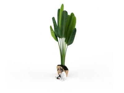 3d綠植盆栽模型