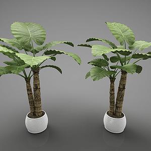 装饰花盆模型