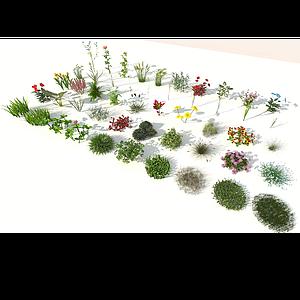 现代室外50棵精品花草模型
