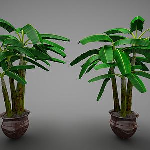 現代風格裝飾植物模型