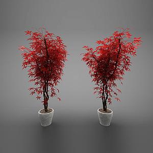現代風格花盆模型